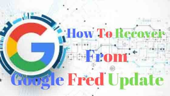 How To Recover From Google Fred Update :