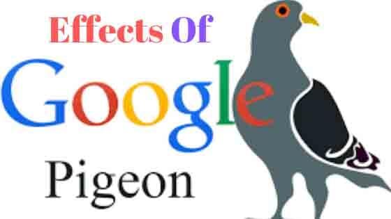 google pigeon update kya hai