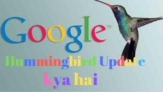 Google hummingbird update kya hai