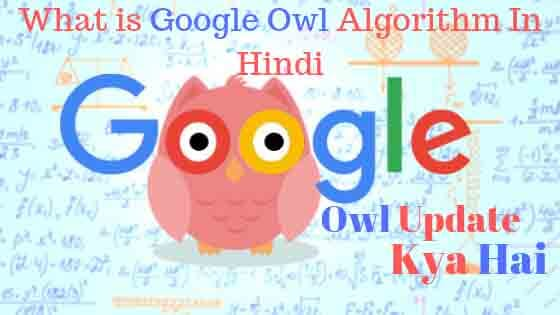 What is Google Owl Algorithm In Hindi